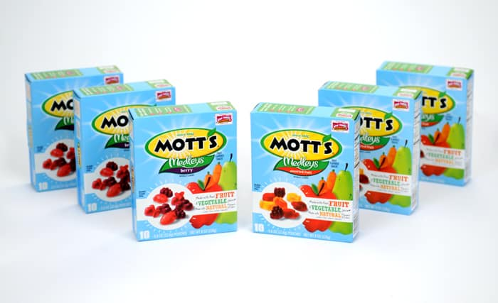 Mott's Fruit Snacks gift pack