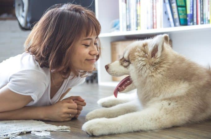 Is Pet Health Insurance Right For Your Best Friend?
