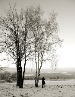 Photography ~ Snowy day in Germany