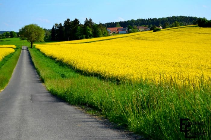 Living in Hohenfels, Germany